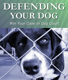 Defending Your Dog